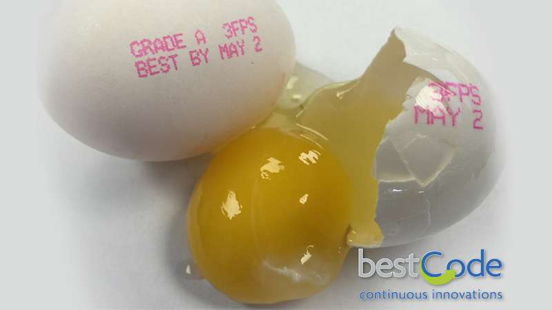BestCode-Model-88S-Food-Grade-High-Speed-Traverse-Egg-Grading